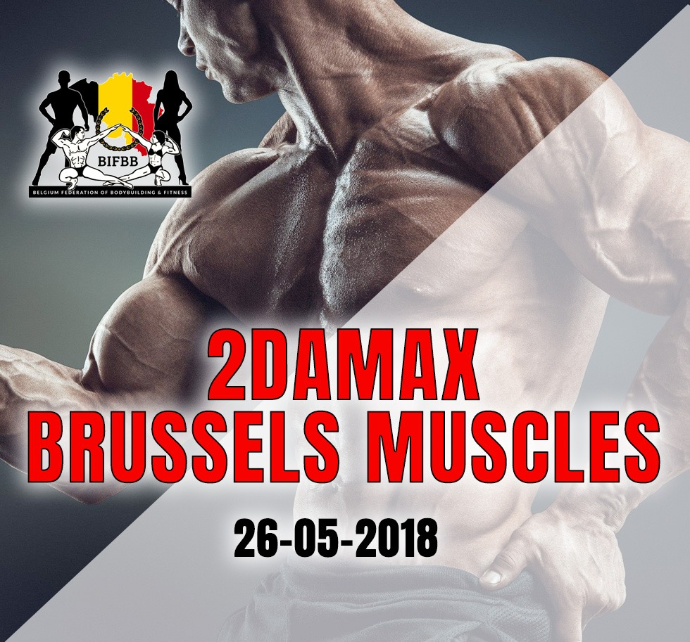 2DAMAX Brussels Muscles